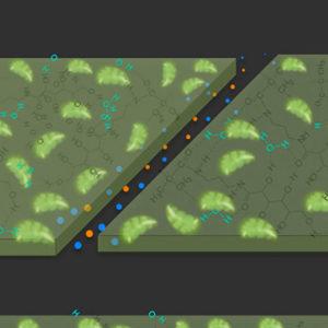 Le MIT crée un nouveau matériau qui pousse, renforce et s'autorépare avec le CO2